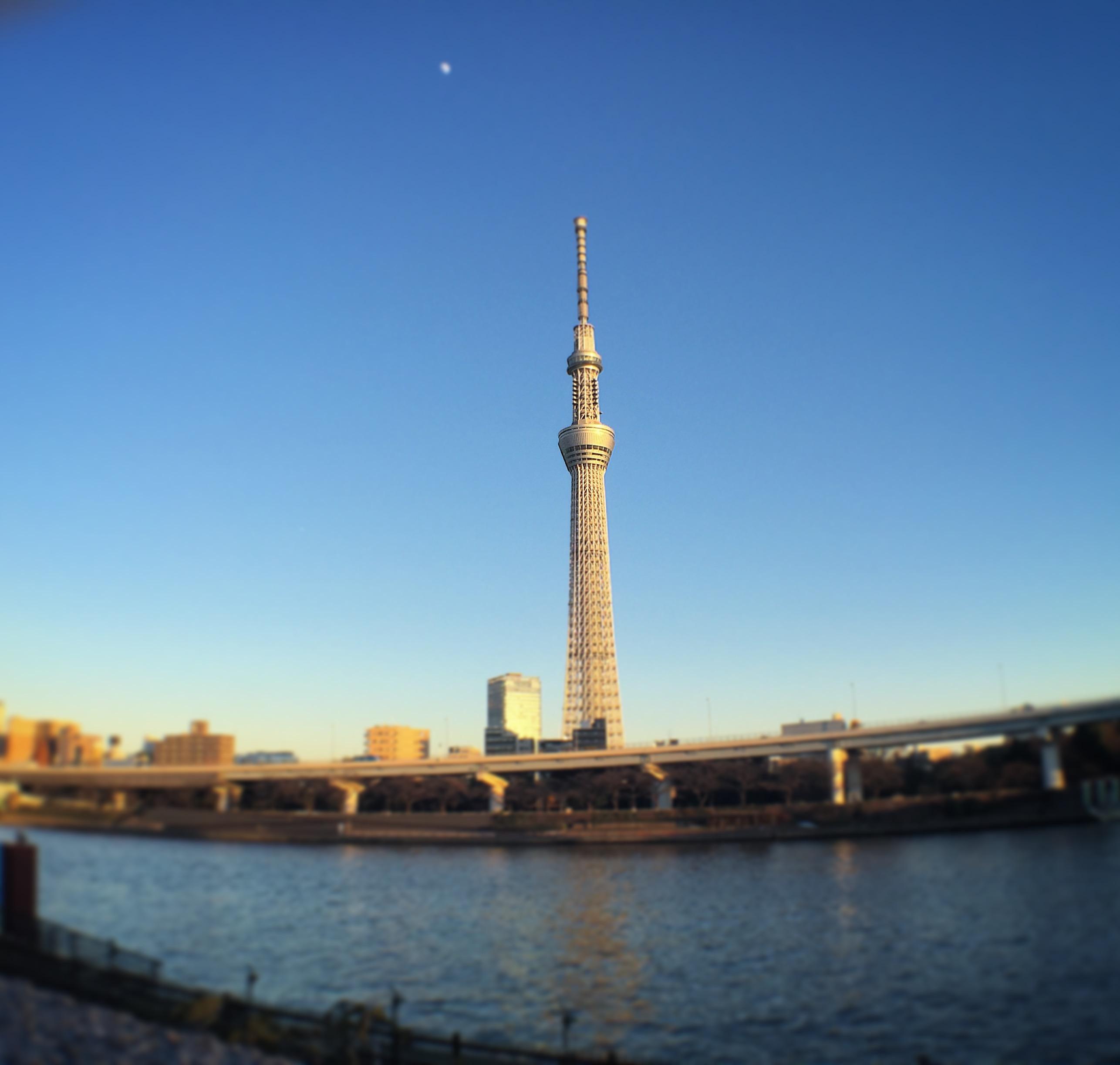 絶景ノマドを東京スカイツリー前の隅田公園で