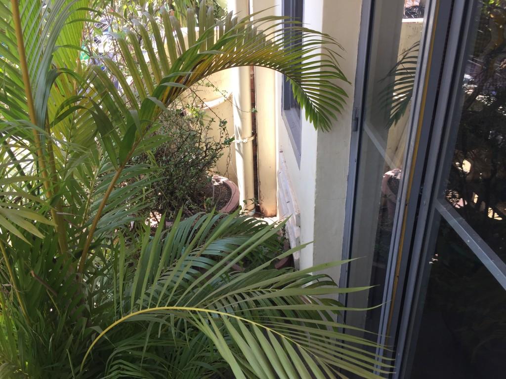 シェムリアップのオススメ無料WiFiカフェ「Joe to Go」の2階席はテラスで喫煙可能