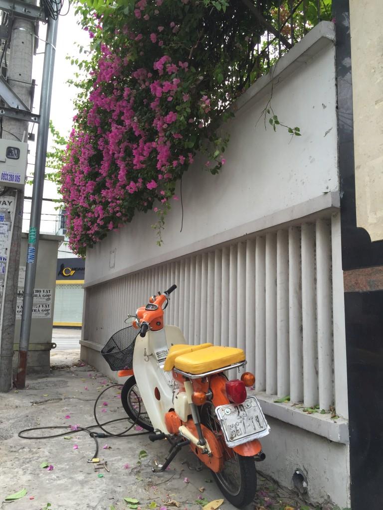 ここは竹富島?街並みがお洒落なホーチミン。
