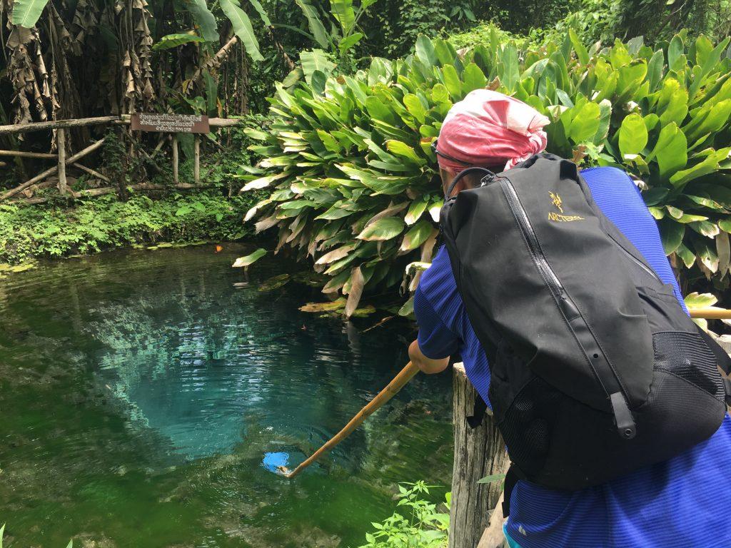 bua thong sticky waterfallにある池の水をすくってみた
