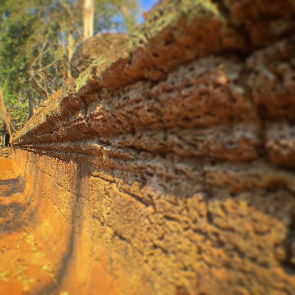 圧巻!世界遺産タ・プロームの外壁