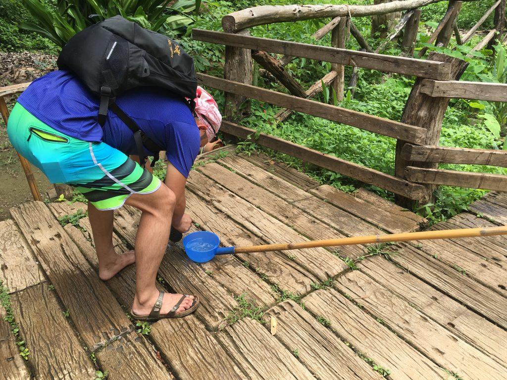 bua thong sticky waterfallにある池