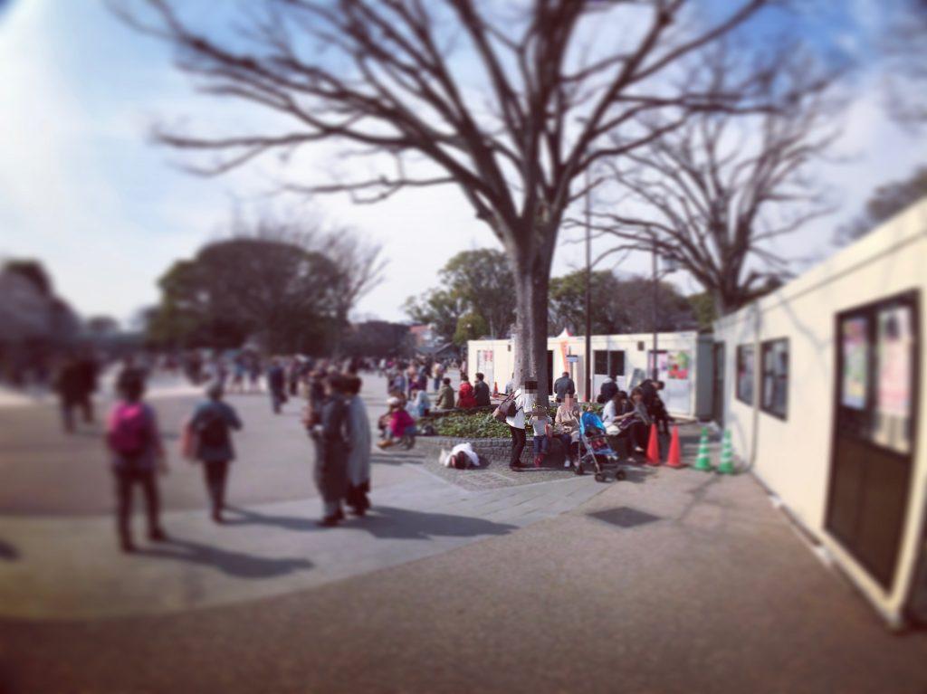 【東京のお花見ベストスポット】大混雑の上野公園でお花見をするならココ!