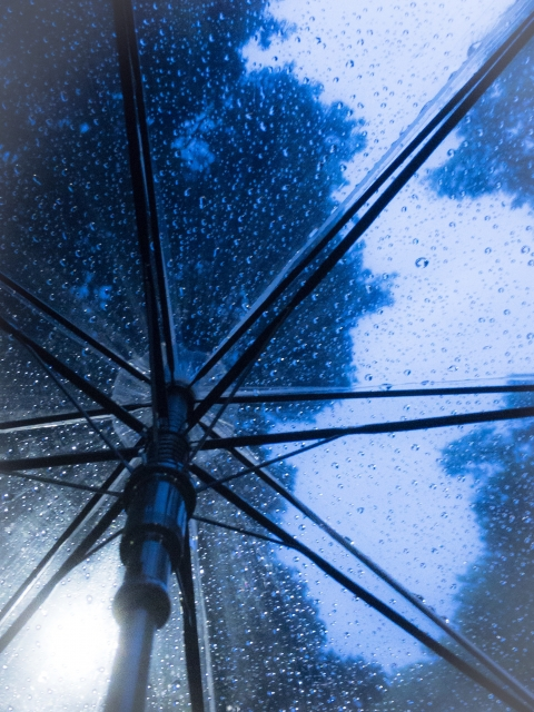 出先で雨降ったら…ビニール傘を買えばいいじゃん?