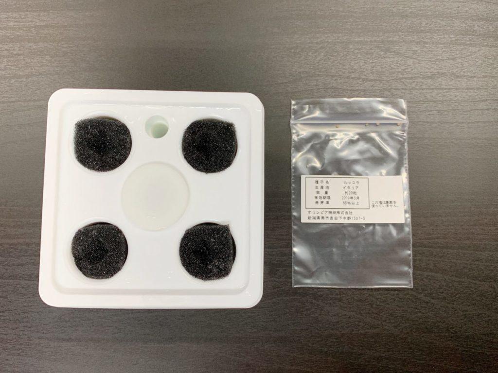 灯菜の栽培容器をセット